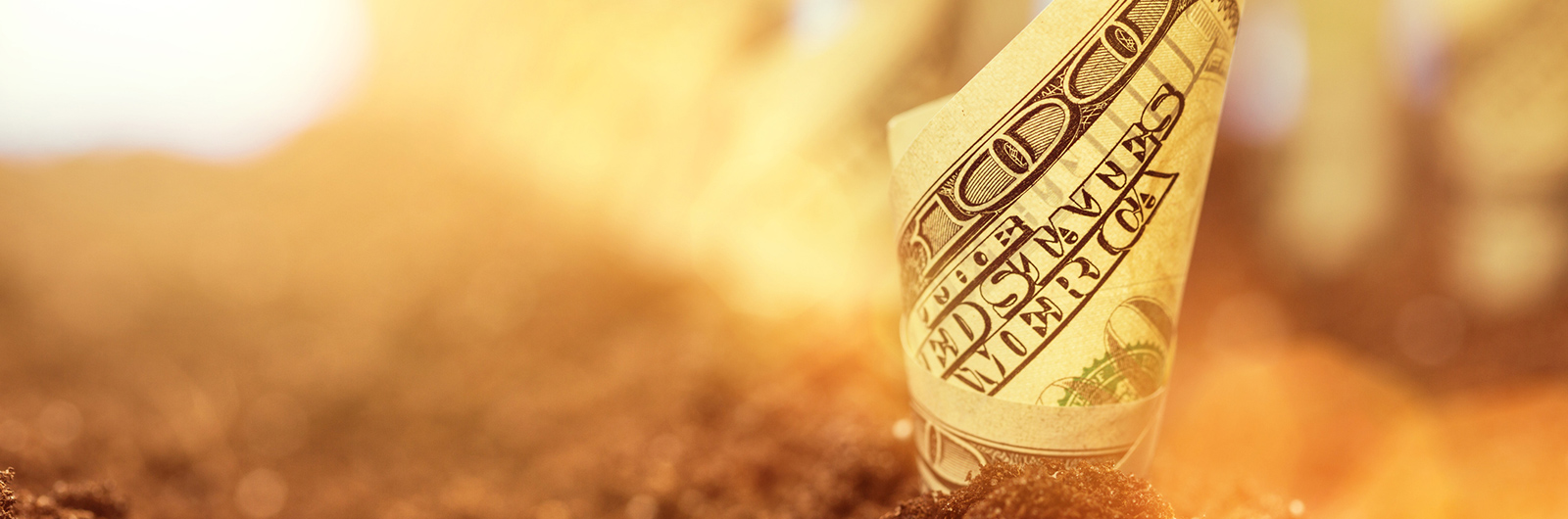 Dani Johnson | 10 Things God Promises Will Make You Money